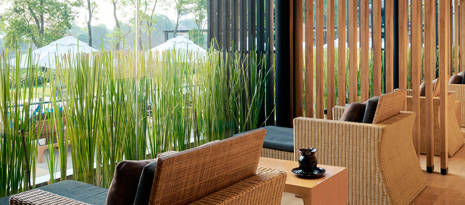 Spa & Wellness Trends